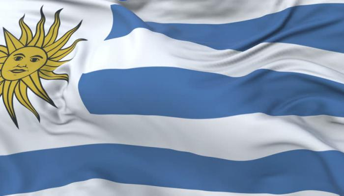 Eight Startups That Have Made the Uruguayan Ecosystem Fashionable