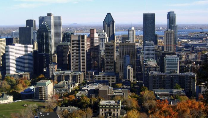 8 Benefits of Working at a Montreal Startup