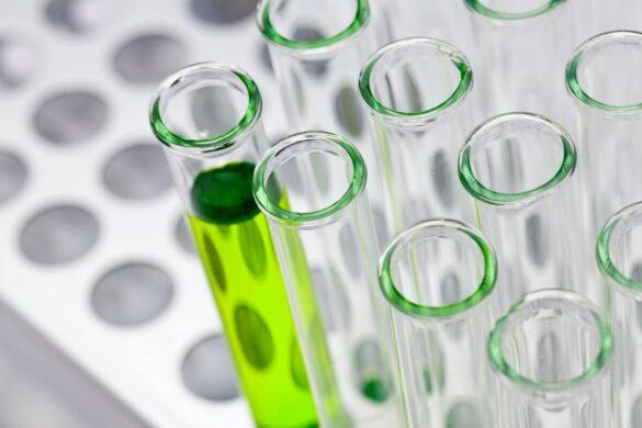 biotechnology canada