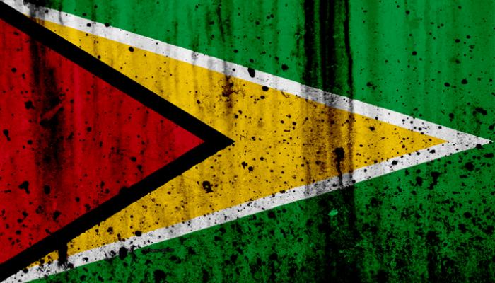 Cinco startups de Guyana que han triunfado en 2017