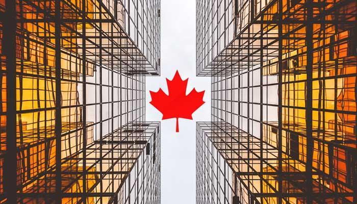 Startups de Canadá: los talentos y las competencias no conocen fronteras