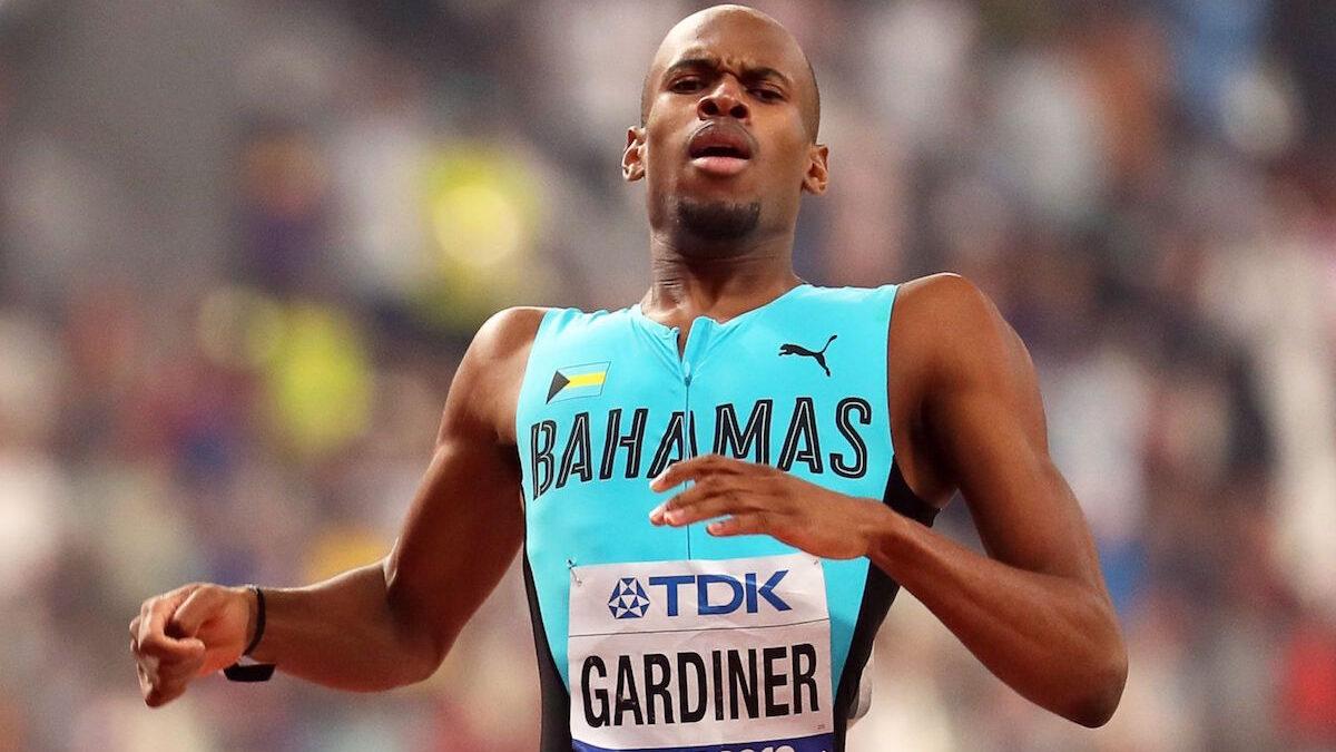 Steven Gardiner
